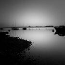 Rising Tide by Adam Lack