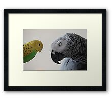 Monti and his new friend :) Framed Print