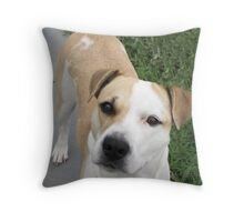 I DON'T BELEIVE U JUST DID THAT!!! Throw Pillow