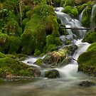 Grza waterfall by Aleksandra Misic