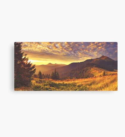 Golden Mountain Road Canvas Print