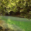 Grza lake by Aleksandra Misic