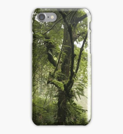 Early Morning, Central China iPhone Case/Skin