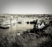 Whitby from the Hill by Buntywabbit