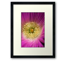 Life is a flower Framed Print