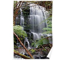Myrtle Creek Falls, South Hobart,Tasmania Poster