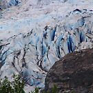 Glacial Detail by Barbara  Brown
