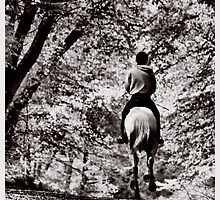 Horse & Rider B&W (4) by SNAPPYDAVE