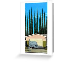 Undercover Greeting Card