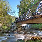 Rail Trail Bridge by Tracy Riddell