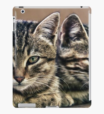 mother and child wild cats iPad Case/Skin