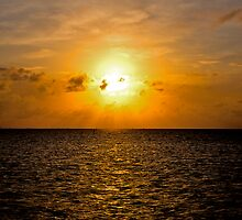 Key Largo Morning by Bill Wetmore