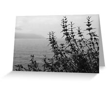 Montreux Esplanade Greeting Card