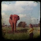 The Elephant & The Little Girl by Melissa Drummond