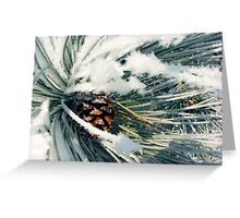 Wrapped in Frost Greeting Card