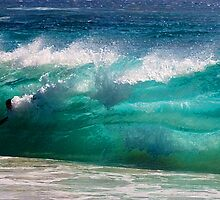 No Limits_Sandy Beach, Oahu, Hawaii by Ron Regalado
