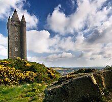 Scrabo Tower by Alan McMorris