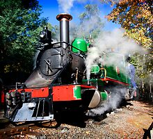 Puffing Billy - steamed by Greg Carrick