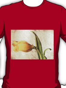Vintage Dream T-Shirt