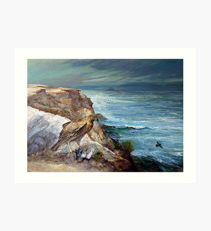 The Pigeon Harrier - Cape Northumberland Art Print