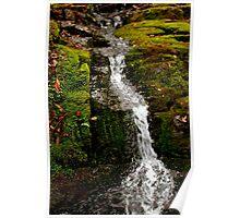 Mossy Falls,South Hobart,Tasmania Poster