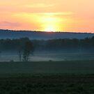 Awaking Fields by Geno Rugh
