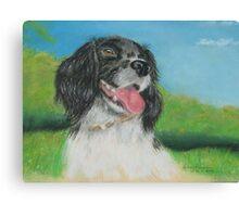 Alice's dog Sammy Canvas Print