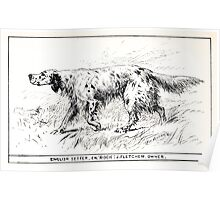 All about dogs a book for doggy people Charles Henry Lane 1900 0077 English Setter_jpg Poster