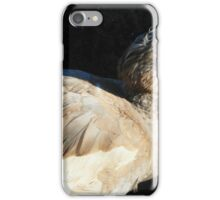 Pretty Bird iPhone Case/Skin