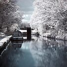 Canal Boat in Infrared by shutterjunkie