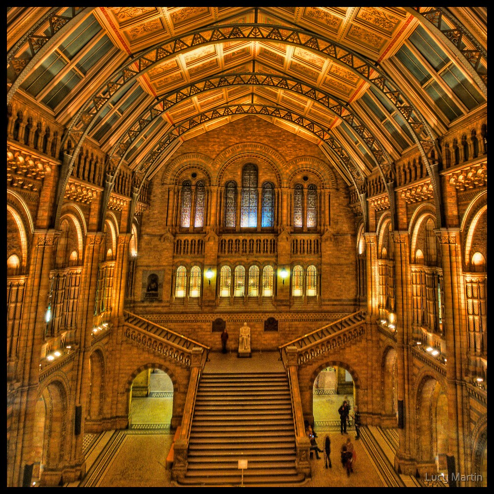 Natural History Museum, London by Lucy Martin