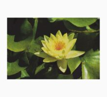 Soft Sunny Yellow - A Waterlily Impression T-Shirt