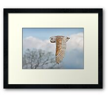 Flypast Framed Print