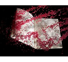 Red sand Photographic Print