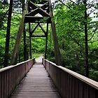 Overlook Bridge Old Man's Cave  Area by mltrue