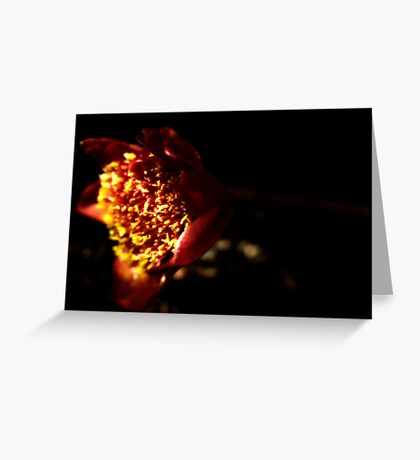 Moody Bloom 1 Greeting Card