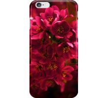 Impossibly Pink - Impressions Of Spring iPhone Case/Skin