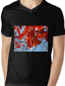 Colours, Crepe Myrtle in Autumn, Tumut, Australia. Mens V-Neck T-Shirt