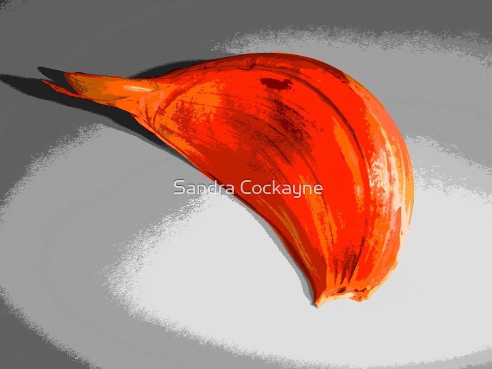 Garlic Colorized by Sandra Cockayne