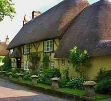 Wherwell Cottages (2) by lezvee