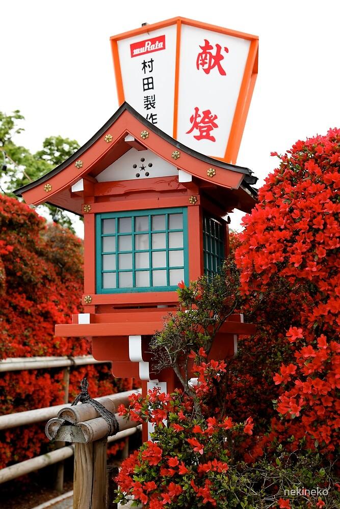 Azaleas and Lanterns at Nagaoka Tenmangu by nekineko