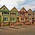 Five Ladies of Occoquan by balexander101