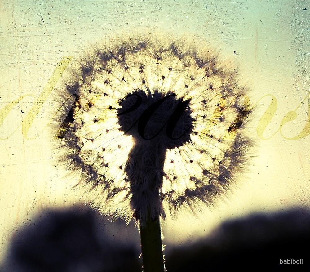 Dandelion Dreams by babibell