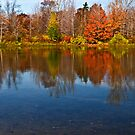 Presque Isle Autumn by Kathy Weaver