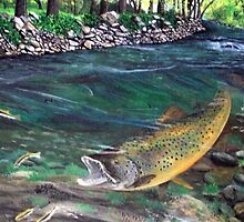 Monster Trout ! by Jedro