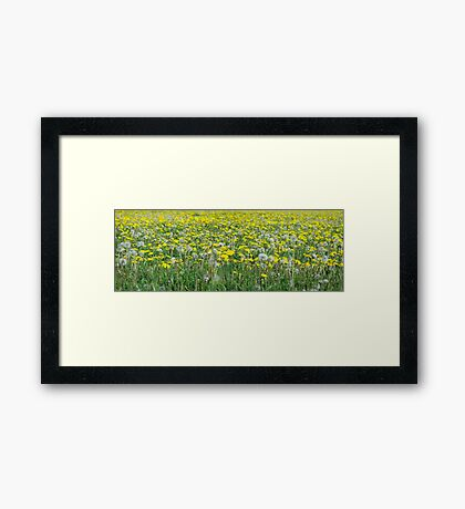 For Tracy Framed Print