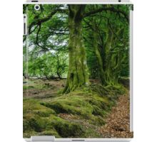 Woodland Scene, Scotland. UK iPad Case/Skin