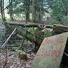 Bridge Closed - Harrison Hot Springs by Sadie Vadnais