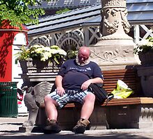 Napping in Tivoli Gardens by trish725