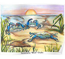 Louisiana Blue Crabs Poster